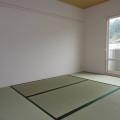 和室(縦向き)・写真は203号室のものとなります。
