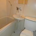 浴室、手洗い・写真はE号室のものとなります。