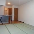 和室(玄関向き)・写真はD-1号室のものとなります。