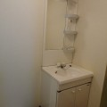 洗面所・写真は302号室のものとなります。