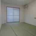 和室(ベランダ向き)・写真はD-1号室のものとなります。