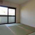 和室・写真は102号室