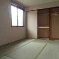 和室・写真はD210号室