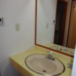 洗面台・写真は507号室