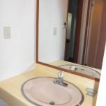 洗面台・写真は501号室