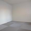 5.5帖和室・写真は202号室