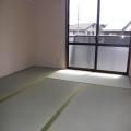 和室6.1帖・写真は202号室